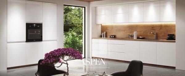 Dvierka na umývačku kuchyne Aspen 713 x 446