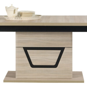 TES Jedálenský stôl TS 9