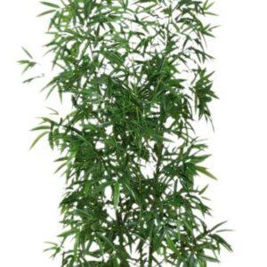 Strom umelý - Bambus